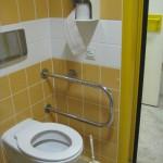 Gesundheitswesen_201206S1_Studie Barrierefreiheit-WC